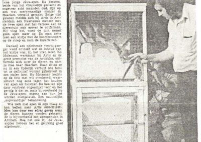 1974-java-apen-in-artisklas