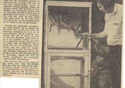 1976-java-apen-bij-artisklas