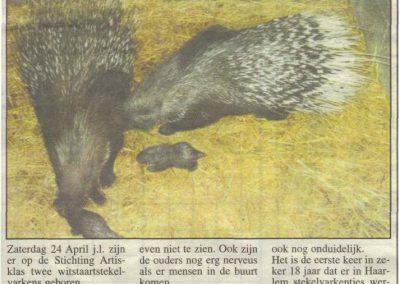 2004-geboorte-stekelvarkens-middenstands-magazine-04-05-2004