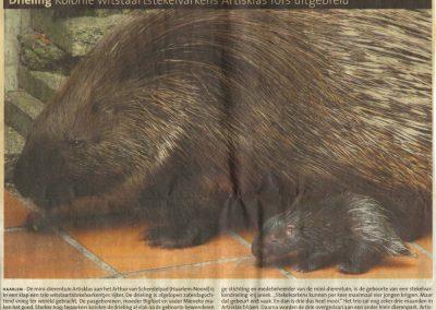 2008-haarlems-dagblad-1-juli-2008