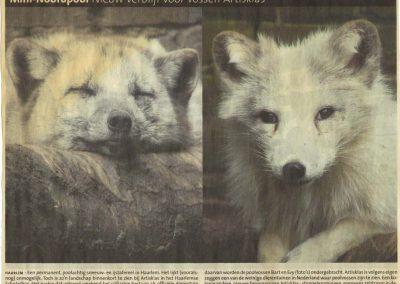 2008-haarlems-dagblad-2-augustus-2008